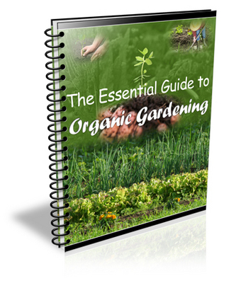 Product picture Bumper Pack of Gardening PLR- Books & Articles