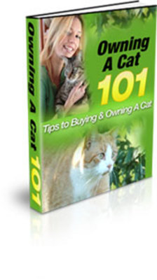 Product picture Pack of Cat & Cat Training PLR- Books & Articles